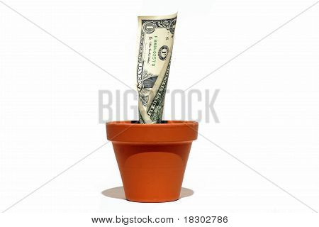 Money growing in a clay pot