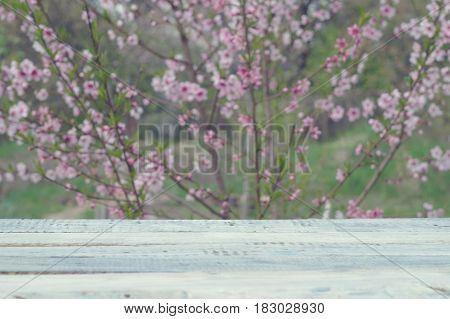 Wooden table of white boards against the background of flowering bush