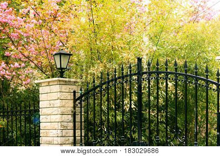 Peaceful black iron gate with colorful plants and lamp