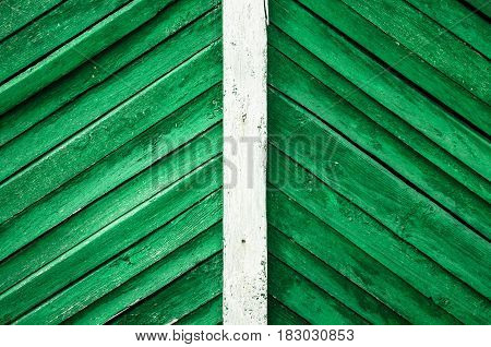 Green wood background texture. Old rural wooden fence background with white line in the middle.