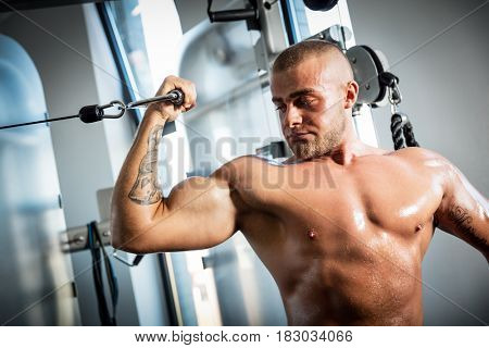 Muscular, strong man working out using gym equipment . Sport and bodybuilding concept.