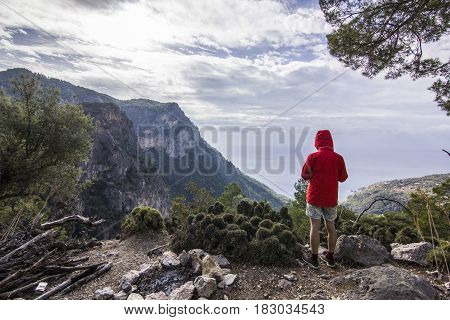 man in red jacket on the cliff near tree in mountains with clouded sky and green grass