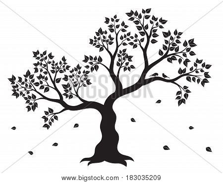 Vector illustration of tree with leaves and two birds in black color on white background. Wall sticker.