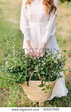 people, holidays and nature concept - young woman with red hair in white holiday dress is holding a large basket of green branches for decoration, girl florist on the summer field
