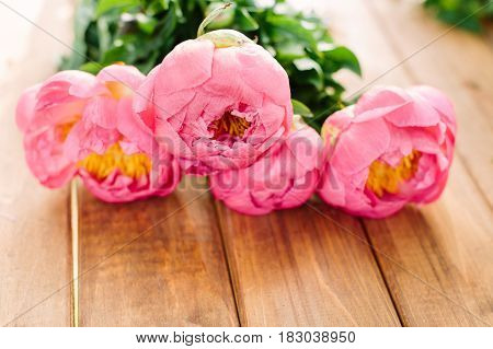 holidays flower and floral arrangement concept - closeup on bouquet of pink peony, light purple petals, yellow stamens and drops of dew, freshness of natural plant on wooden table