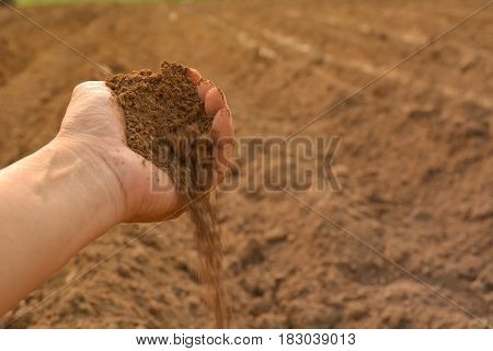 Soil in hand cultivated dirt. earth or ground with nature background.