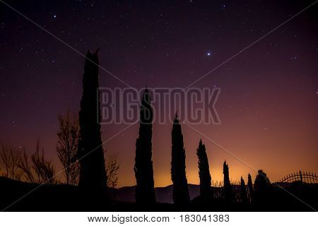 silhouette of cypresses at dusk with a starry sky in Tuscany