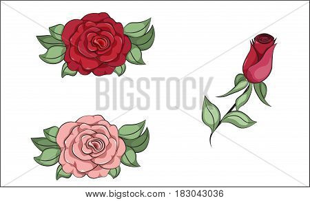 coloring rose red and pink flower set