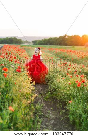 poppies, agriculture and ecology, nature and summer concept - on agricultural garden beds planted with poppies little blonde girl run and laugh, she is in a red party dress, red flowers in hair