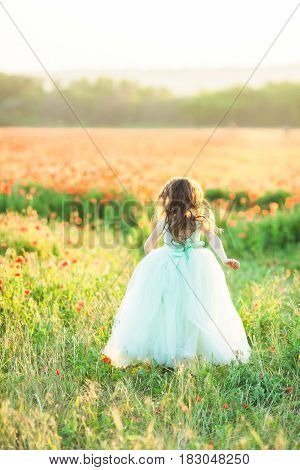girl model, poppies, childhood, fashion, nature and summer concept - in the blossoming field of red poppies a young girl runs away, her pale blue ball gown, her hair loose wave