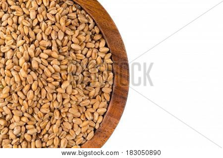 Wheat Grain In Bowl
