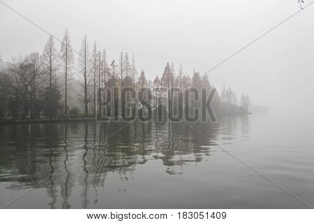 Foggy forest on the lake. Trees in the mist reflecting on the water