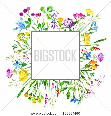 Floral frame of wild flowers and herbs on a white background.  Buttercup, cornflower, clover, bluebell, forget-me-not vetch timothy grass, lobelia, snowdrop flowers. Watercolor hand drawn illustration.