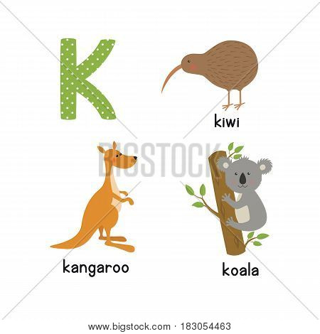 Cute zoo alphabet in vector. K letter. Funny cartoon animals: kangaroo, koala, kiwi bird. Alphabet design in a colorful style.