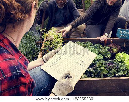 Gardener Hobby Agriculture Backyard Green
