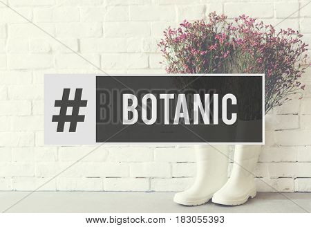 Botanic Flower Bloom Bouquet Fresh