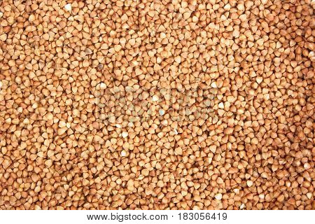 Background, texture, the rump. Buckwheat. Roasted buckwheat. Useful properties of buckwheat. Garnish. Ingredient, product cook Brown Agribusiness crop organic farming Dietary product