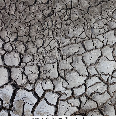 The Background of grey dry cracked ground