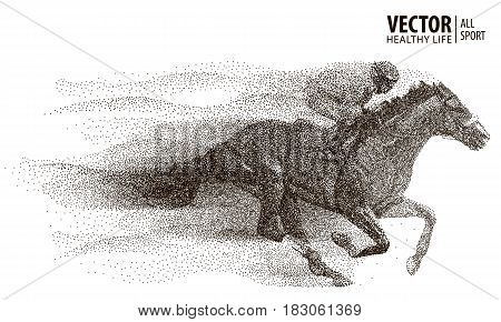 Jockey on horse. Champion. Horse racing. Hippodrome. Racetrack. Jump racetrack. Horse riding. Racing horse coming first to finish line from particle. Vector illustration.