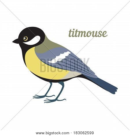 Colorful illustration of titmouse. Vector bird icon. Isolated on white background. Flat design.