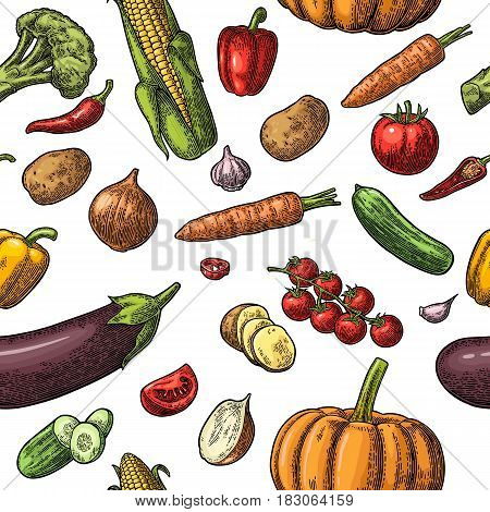 Seamless pattern vegetables. Cucumbers, Garlic, Corn, Pepper, Broccoli, Potato, Carrot, Onion, Eggplant and Tomato isolated on the white. Vector color vintage engraving illustration for poster, menu