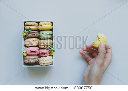 Hands Holding Macaroon And Gift Box With Delicious Macaroons On The Light Blue Background, Top View