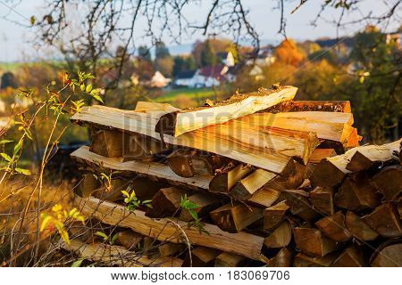picture of a pile of logs in a country landscape