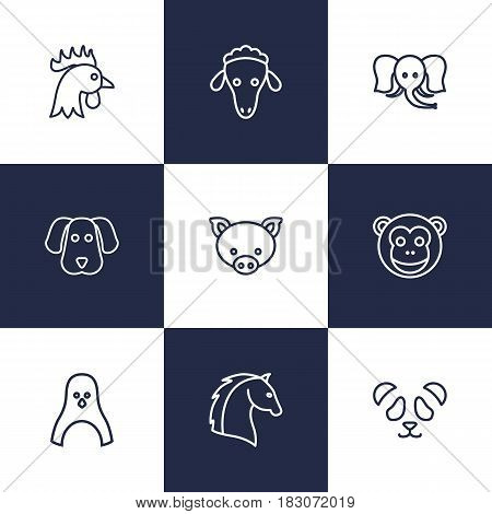 Set Of 9 Beast Outline Icons Set.Collection Of Penguin, Pig, Sheep And Other Elements.