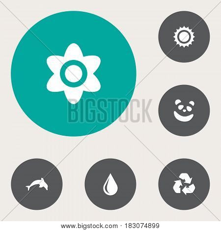 Set Of 6  Icons Set.Collection Of Solar, Conservation, Bloom And Other Elements.