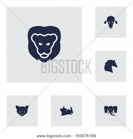 Set Of 6 Brute Icons Set.Collection Of Wildcat, Hog, Trunked Animal And Other Elements.
