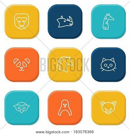 Set Of 9 Brute Outline Icons Set.Collection Of Penguin, Horse, Rhino And Other Elements.