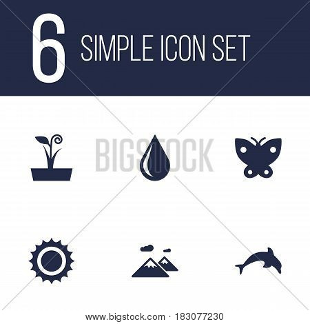 Set Of 6 Nature Icons Set.Collection Of Flowerpot, Solar, Grampu And Other Elements.