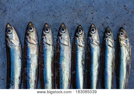 Fresh anchovy background