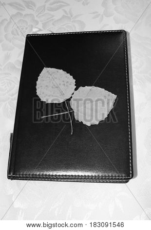 Black and white image of a notepad and leaves