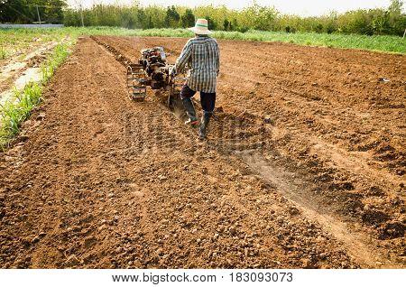 worker machinery plowed in field corn in farm