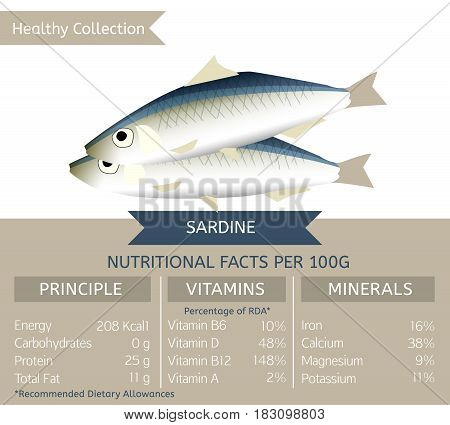 Sardine health benefits. Vector illustration with useful nutritional facts. Essential vitamins and minerals in healthy food. Medical, healthcare and dietary concept.