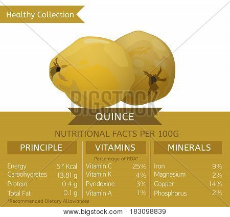 Quince health benefits. Vector illustration with useful nutritional facts. Essential vitamins and minerals in healthy food. Medical, healthcare and dietory concept.