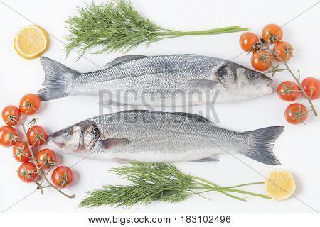 European Seabass, Branzino Fish