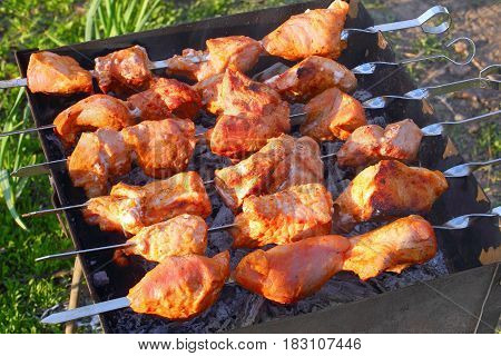 Delicious Juicy Chargrilled Shashlik, Top View