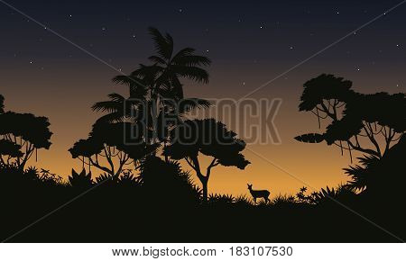 At morning scene jungle with tree silhouette vector art