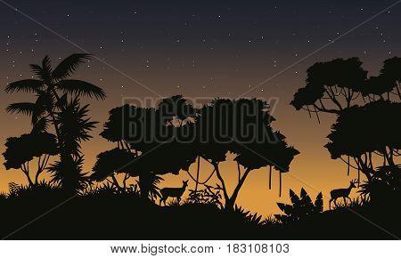 Silhouette of rain forest scenery vector illustration