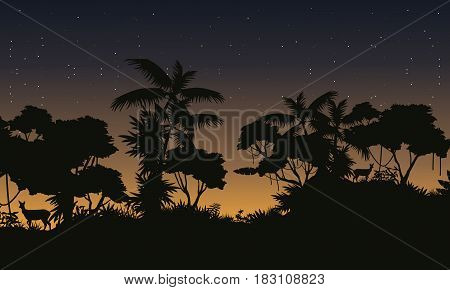 Jungle with tree silhouette beauty landscape vector illustration