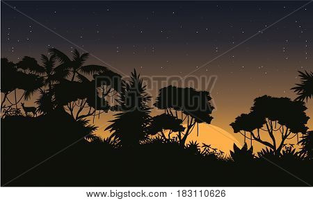 Beauty landscape jungle at the morning collection vector art
