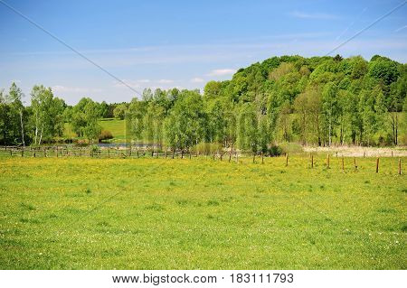 Spring landscape with beautiful and fresh green fields and meadows