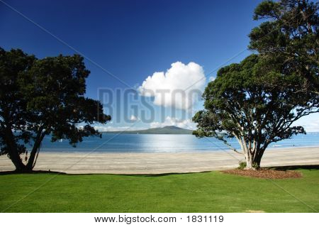 Rangitoto Through The Trees