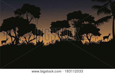 Silhouette of jungle beauty landscape vector illustration