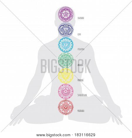 Chakras of a man with names. Decorated.