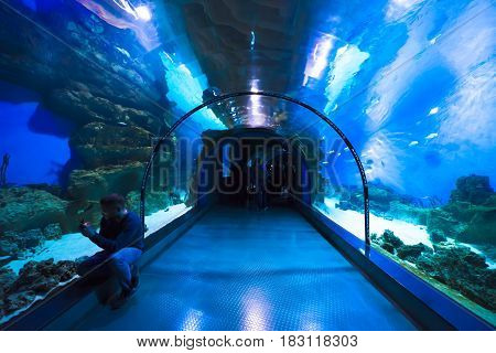 Moscow, Russia - April 16, 2017: Moskvarium Oceanography and Marine Biology Center at Moscow's VDNKh Exhibition Center. Oceanarium tunnel, closeup. Man takes a photo of fish.