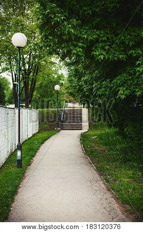 Sidewalk of a park during spring green fresh leaves and stairs in the distance.