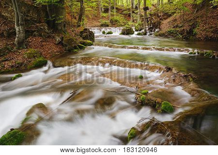 Clear and rapid mountain river in the spring forest. Grza river, Serbia